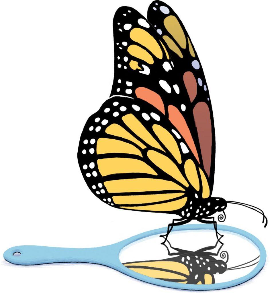 Butterfly looking in mirror