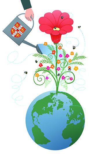 Watering flower on earth