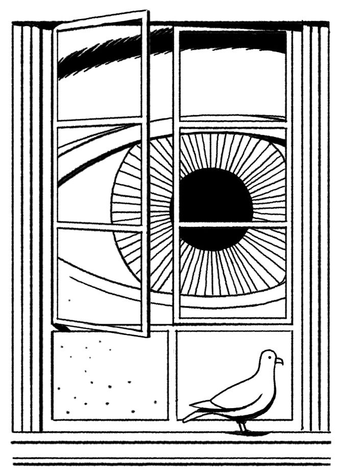Eye looking through window