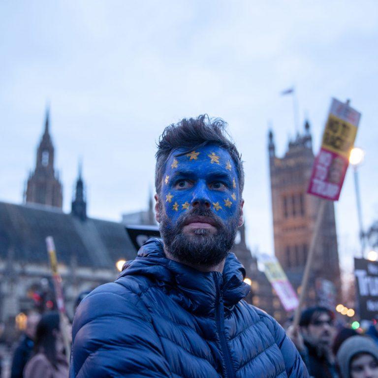 Pro-EU protester